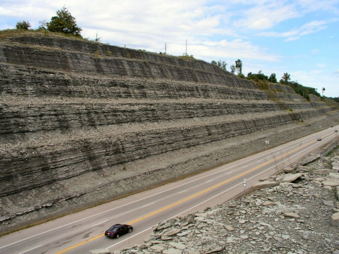 Read Cut near Cincinnati. Most of these rocks are fulls of fossils.