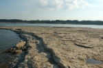 Looking out over the fossil reef appearing just above the Ohio River.  The reef appears again on the other side of the river and covers many hundreds of square miles under the hills of Kentucky and Indiana but is exposed here where the Ohio River has eroded the rock layers from above.  This is all fossil coral that you see in this picture. See close ups below.   Image: Joel Duff - free to use with credit to this page.