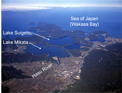 radiocarbon dating lake sediments A new leap forward for radiocarbon dating sediments and ancient leaves recovered from the bottom of a japanese lake will help scientists around the world more precisely date ancient objects.