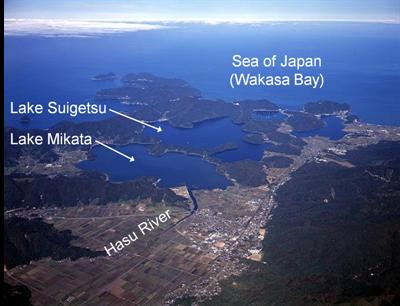 Japanese lake varves dating