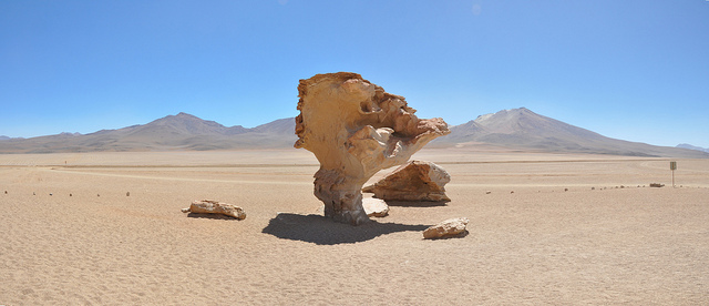"A ""tree"" rock in the Atacama desert. This is the result of wind erosion. This rock is about almost 20 feet tall and the lower portion is exposed to wind-blown sand which has eroded the base faster than the top. I don't know what the source of this image is. I found several version none of which have a reference."
