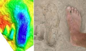 This is a human fossil footprint from Ileret, Kenya.  This footprint is widely accepted as an authentic footprint fossil  (center) beside a foot (right) and color-contoured 3D laser scan image (left) of the print.  This fossil was found in relatively young rock that is thought to have formed from a volcanic ash event after which someone walked across the new ash prior to its preservation. (Credit: Brian Richmond/George Washington University)