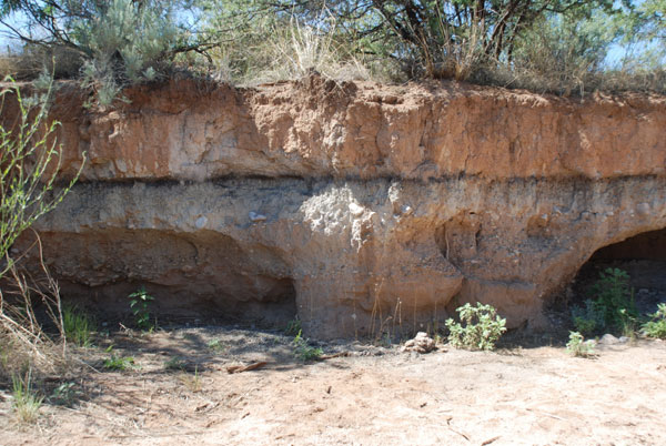 Fig. 5. The dark line shown above is the black mat (12.9 ka) along the arroyo wall of the Murray Springs Clovis site in Arizona. The YDB markers, including magnetic grains and microspherules, iridium, soot, and fullerenes with ET helium, are present in the few centimeters just below the black mat at the top of the underlying sediment. This lithologic break represents the surface at the end of the Clovis period before the formation of the black mat. Clovis artifacts, a fire pit, and an almost fully articulated skeleton of an adult mammoth were recovered at Murray Springs with the black mat draped conformably over them. Excavations by Vance Haynes, Jr., and colleagues also revealed hundreds of mammoth footprints in the sand infilled by black mat sediments. These footprints and the mammoth skeleton appear to have been preserved by rapid burial after the YDB event (1). No in situ Clovis points and extinct megafaunal remains have been recovered from in or above the black mat, indicating that the mammoths (except in isolated cases) and Clovis hunting technology disappeared simultaneously. 1. Haynes CV, Jr (1987) Centennial Field Guide Volume 1: Cordilleran Section of the Geological Society of America (Geolog Soc Am, Boulder, CO), Vol. 1, pp 23-28.