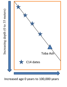 Generalized cartoon graph of the relationship between the age of sediments and their depths in cores from the middle of lake Malawi in Africa.  The slope of the line drawn through the radiometric dates predicts the rate of sediment deposition each year.  Following the line down through where the Toba ash is found in the column finds that the Toba ash is predicted to be 70 to 80 thousand years old which is in the range it has been dated in other locations.