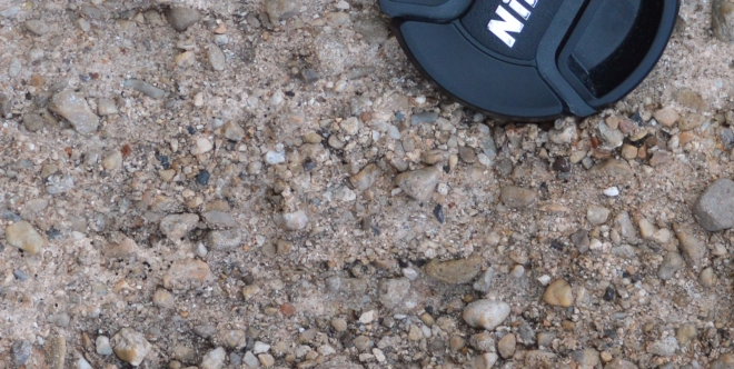A close-up of the conglomerate rock that the dinosaur bones are embedded in.  Here you can see the small pebbles that made up the river/stream bed that the dinosaur bones were likely buried in at bend in the river.  Photo credit: Joel Duff