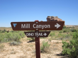 Sign to the Mill Canyon dino trail on Mill Canyon road.   I didn't think to take a picture of the sign.  Photo credit: http://www.exhibitfiles.org/mill_canyon_dinosaur_trail2
