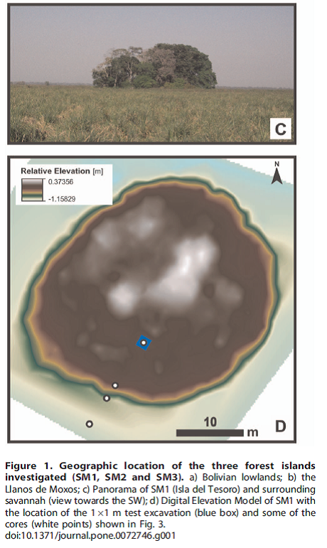 Figure 1 from Lombardo et al. 2013 PLosOne paper. This shows the forest island SM1 which I have take a screenshot from Google maps below.
