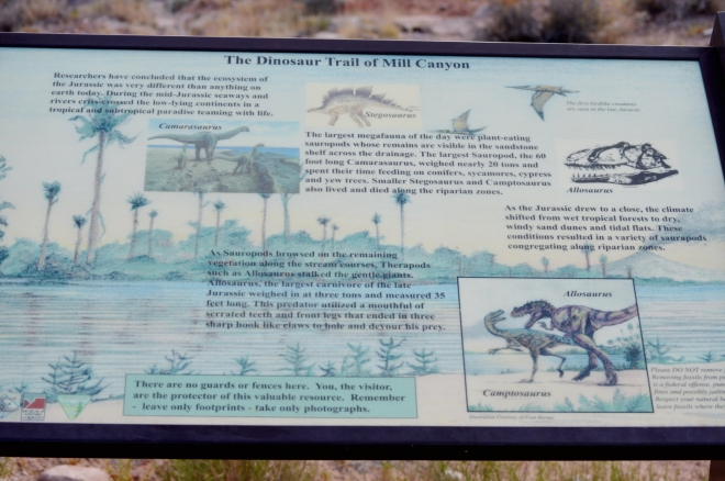 Interpretive sign at the beginning of the Mill Canyon Dinosaur Trail