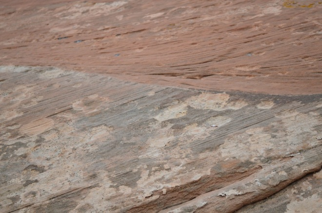 "Another example of sediment layering that suggests these were sand dunes that have ""fossilized"". This one is from the base of Looking Glass Arch about 20 miles south of Moab UT.  Image Credit: Joel Duff"