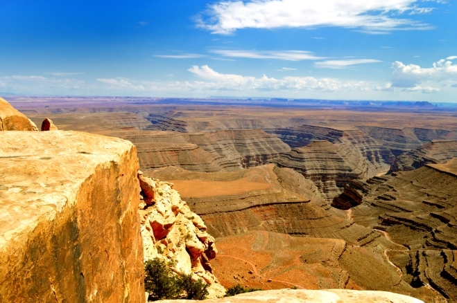 At Muley Overlook which looks out over the Goosenecks of the San Juan River. Almost all of these layers of rock are sitting below the layers of rock that contain the dinosaurs on the dinosaur trail near Moab Utah.  Photo Credit: Joel Duff