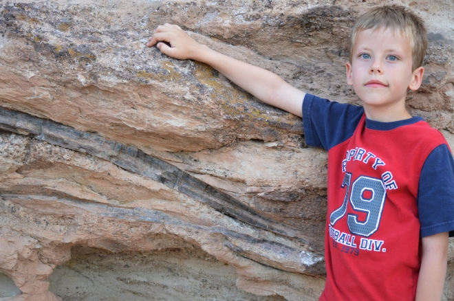 My son, Elijah, is standing next to this sauropod shoulder blade and rib bone for scale.  Photo credit: Joel Duff