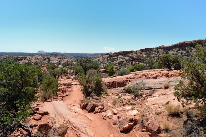 The trail up to upheaval dome.  Just in the distance is the end of the rim of the dome where the overlook is.  Photo: Joel Duff