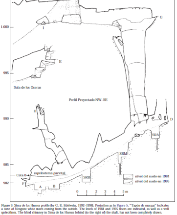 """Fig. 1. Drawing of the Sima del los Huesos (the pit of bones) cave.  The vertical shaft.  The figure is from Arsuaga et al. """"Sima de los Huesos (Sierra de Atapuerca, Spain), The Site""""  JHE 33 (1997): 109-127."""