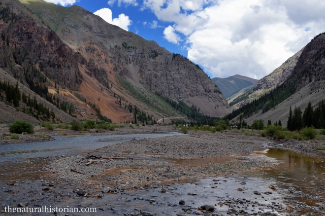 Animas River east of Silverton Colorado on the way to the ghost town of Animas Forks