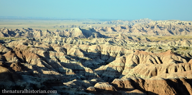 Looking south at sunrise in Badlands National Park just south of Wall, SD.