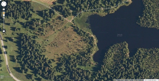 Google map image of the bog at lake Etang de la Gruere Photo by Wehrlireapub on Panoramio )link to source).  The bog is the nearly treeless area to the left of the lake.