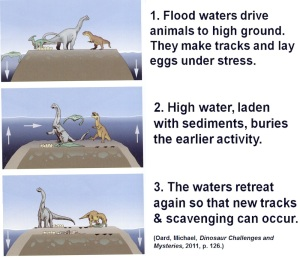 This is a figure from a creationists book showing how dino nests may have been preserved in a global flood.   In our example here, those eggs would also have to be incubated for probably weeks and then the young dinos grew for weeks after that before then being buried by the rising waters.