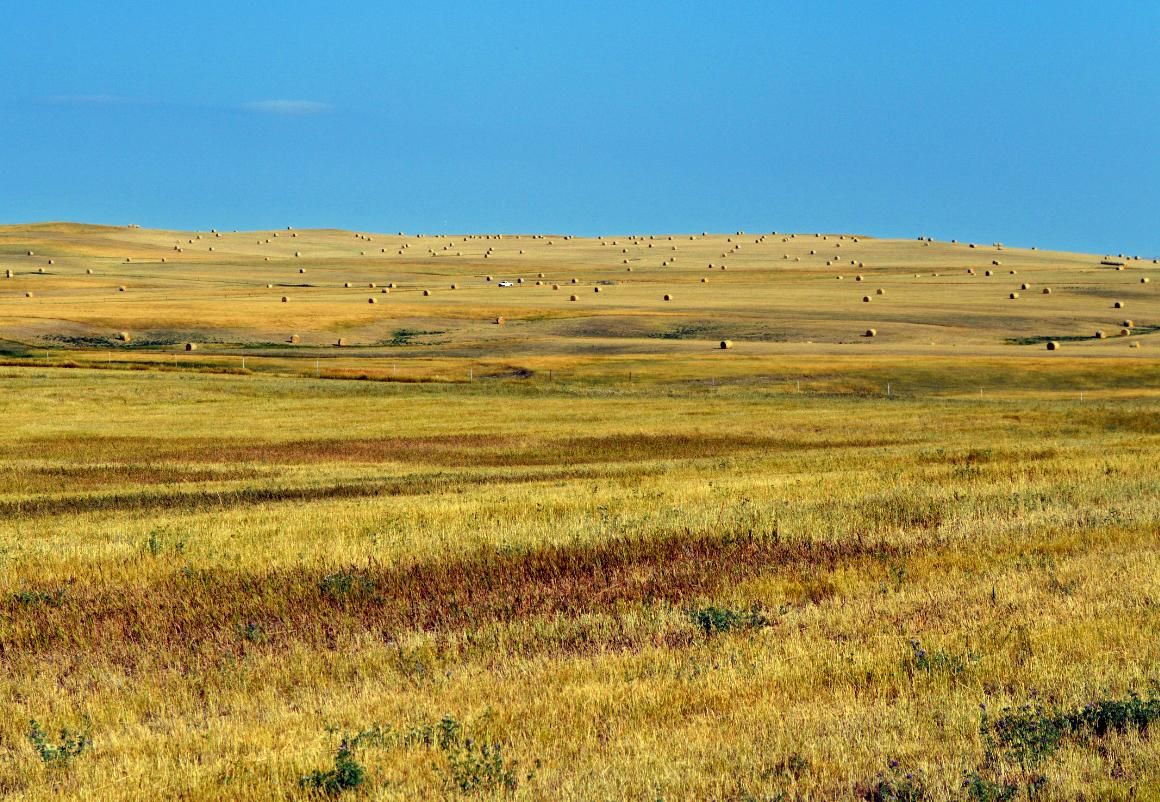 Landscaping Rock Yankton Sd : Nh photography badlands national park south dakota naturalis historia