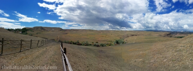 "A panoramic image of my ""backyard"" at the edge of Orchard Mesa south of Grand Junction."