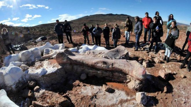 May 16, 2014: Residents and technicians look at the bones of a dinosaur at a farm in La Flecha, west of Argentina's Patagonian city of Trelew. PR photo: REUTERS/Daniel Feldman