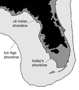 The past coastline of Florida.  Evidence of human occupation has been found in many places off of the current coast of Florida in areas that would have been above sea level 10,000 years ago. Image from: http://www.adirondackexplorer.org/book_reviews/deep-future-the-next-100000-years-of-life-on-earth