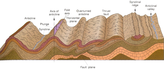 Rock folding caused by compression resulting from continents pushing against each other.  The folds and thrust faults shown here are seen all over the central Pennsylvania region and into West Virginia and Maryland including Sideline Hill which is a syncline.