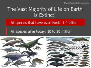 A slide from a recent presentation I made on the discovery of deep time illustrating the mind-boggling estimates of number of species that have lived on earth versus the number alive right now. The images are of extinct marine reptiles on the left and cetacean alive today on the right. Image: Joel Duff