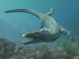 Nothosaur - a marine reptile with webbed feet, elongated jaw and long tail.