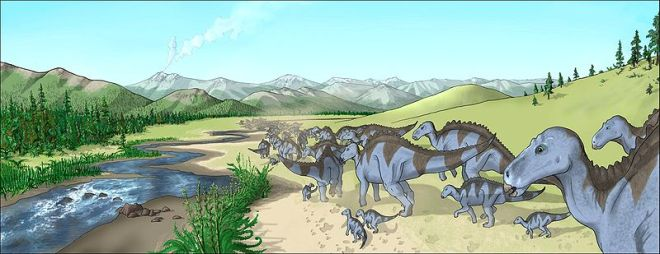A herd of Maiasaura, a hadrosaur from the Upper Cretaceous of North America, walking along a creekbed in a semi-arid landscape what is today the Two Medicine Formation.  Credit: Wikipedia, user Debivort