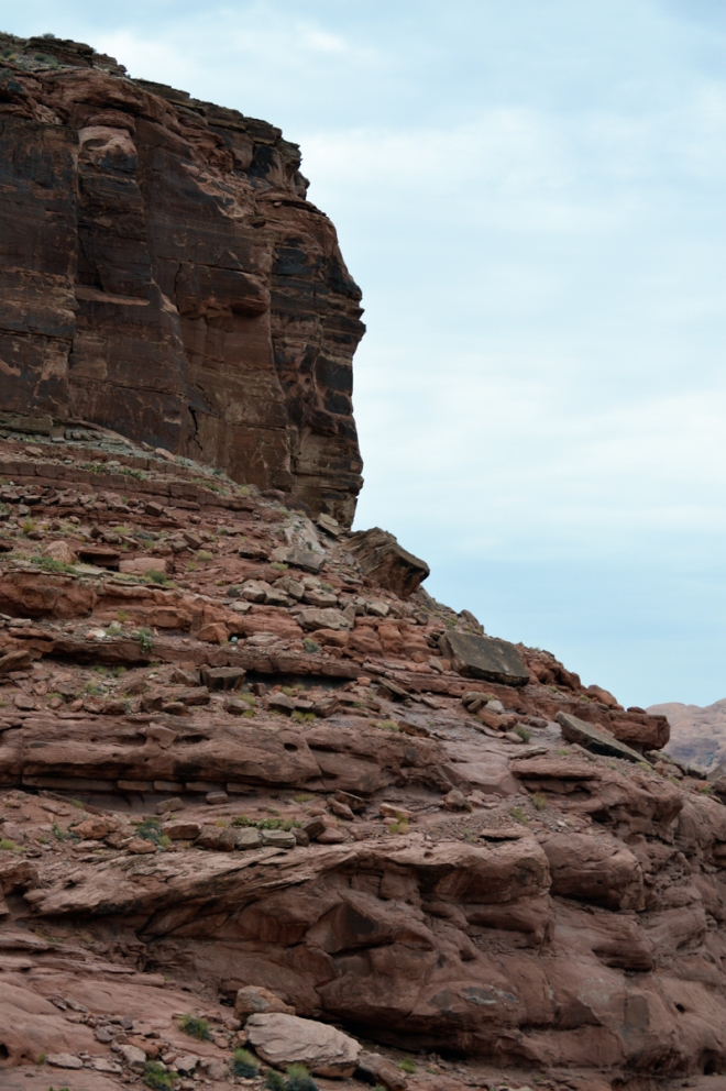 The larger context for the picture above. The rock with the footprints is on the slope to the right.  This cliff overlooks the Colorado River just west of Moab UT.  Image credit: Joel Duff