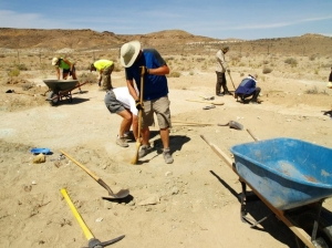 BLM employees and other volunteers sweeping away sediments to explore more tracks at this newly discovered site north of Moab UT. Image: BLM