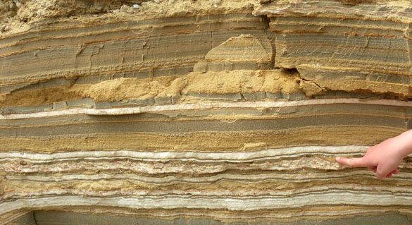Several hundred years of sediment and precipitated mineral deposits exposed near the Dead Sea. Each layer represent different conditions such as great evaporation, change in water temperature, new input of sediments from rivers etc... This image is from a great blog from the College of Wooster geology program.  Other images of the Dead Sea sediments can be found here:  http://woostergeologists.scotblogs.wooster.edu/2012/03/17/dead-sea-sediments-and-some-impressive-seismites/