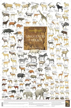 All of the living African ungulates.  At some point in the past South America probably had as many species alive at one time.