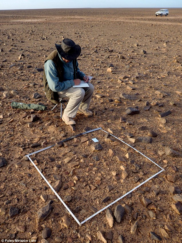 A researcher is recording artifacts from a one meter square plot in the Libya Sahara desert.