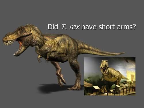Did-trex-short-arms-origins-science