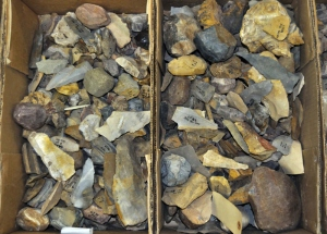 A sample of some of the stone artifacts collected at Kathu Pan.