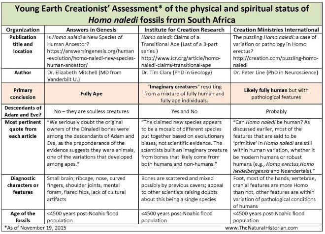 Homo-naledi-fossils-YEC-scorecard