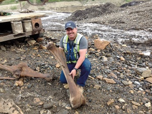 Placer miner Guy Favron holds a woolly mammoth femur found along Last Chance Creek. Photo courtesy of Government of Yukon Link to story: http://uphere.ca/articles/fossil-gold-mines