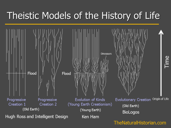 A comparison of models of how organisms have changes, or not changed, throughout Earth's history. This is a slide from one of my seminars that I use to give a simple overview of different models for the origins of modern diversity from a theistic viewpoint.