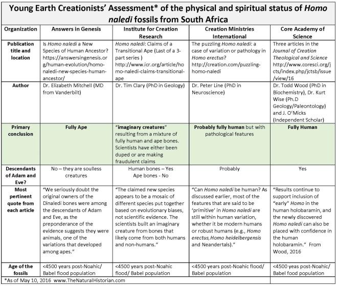 Homo-naledi-Scorecard-creationism