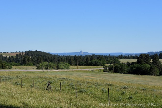 First sighting of Devils Tower coming up from the south. Image: Joel Duff