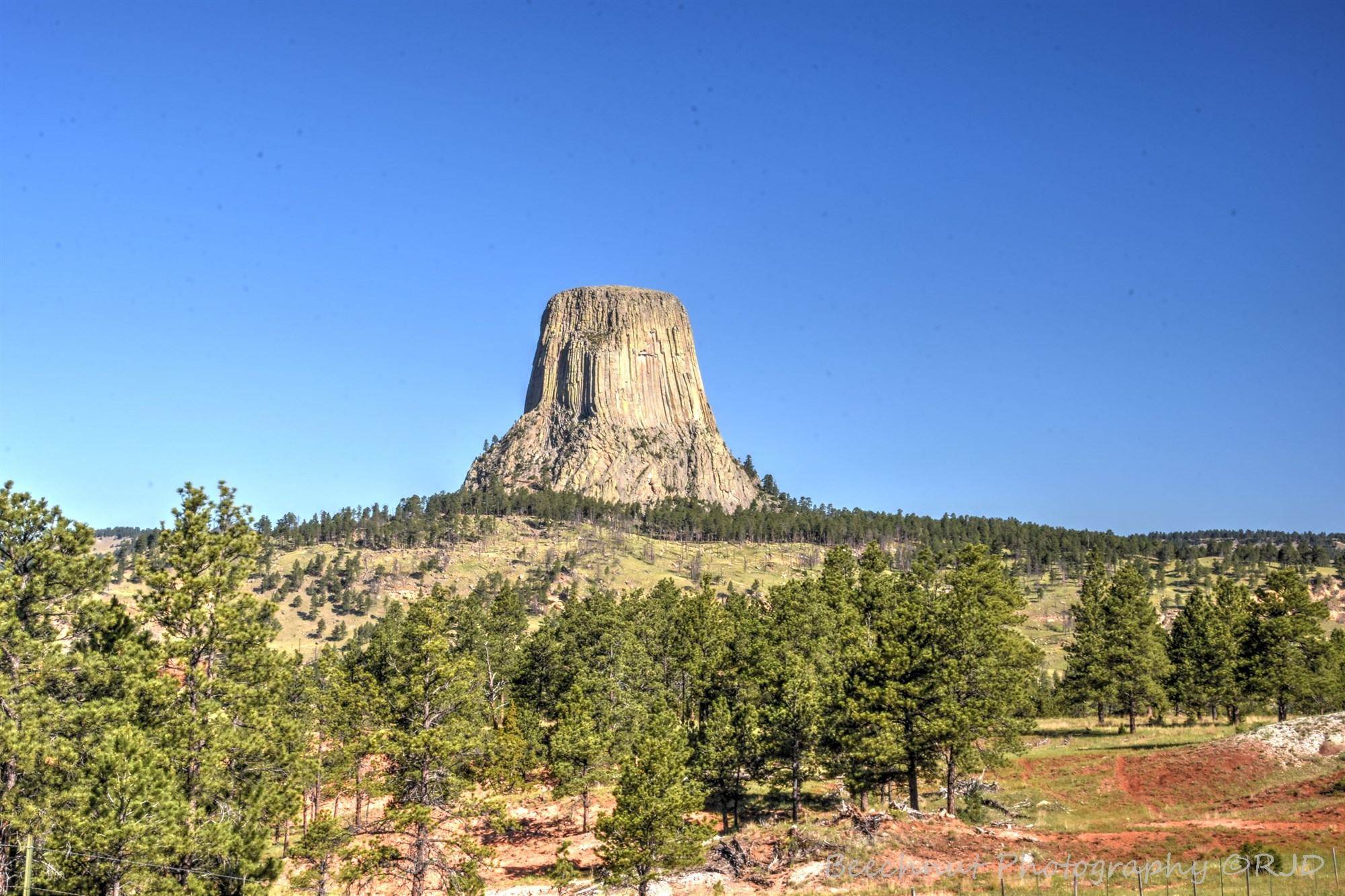 Devils Tower Wy >> NH Photography: Devils Tower National Monument – Naturalis Historia