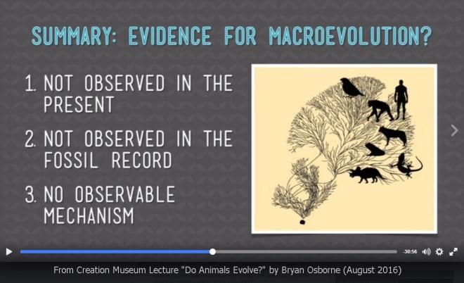 AiG-Osborne-macroevolution-summary-2016