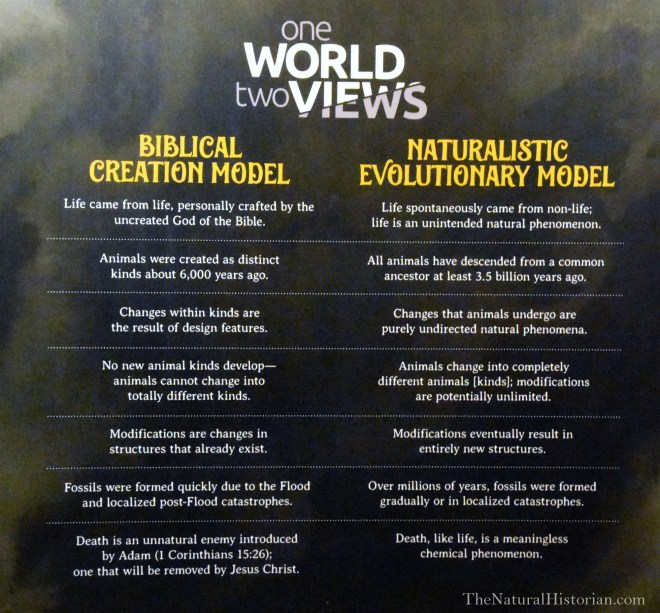 Biblical-evoluton-vs-naturalistic-evolution-ark-encounter