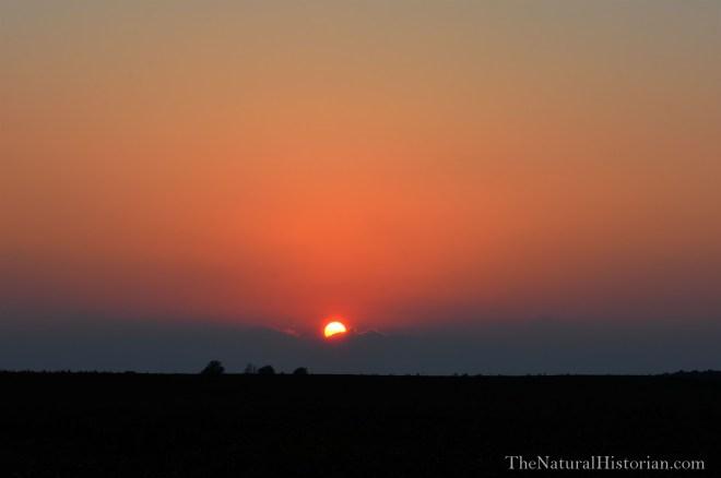 Sunset-Kentucky-July22b-Beechnut-Photos-rjduff