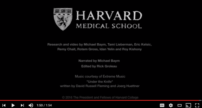 Screenshot of the credits from the video