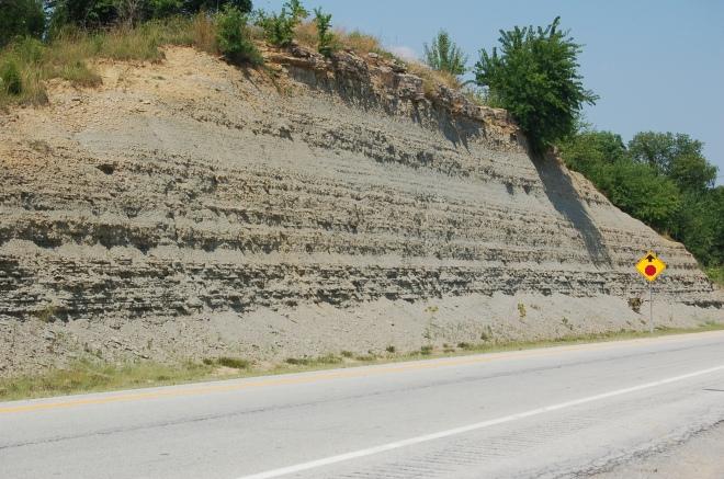 kentucky-roadcut-fossils-i71